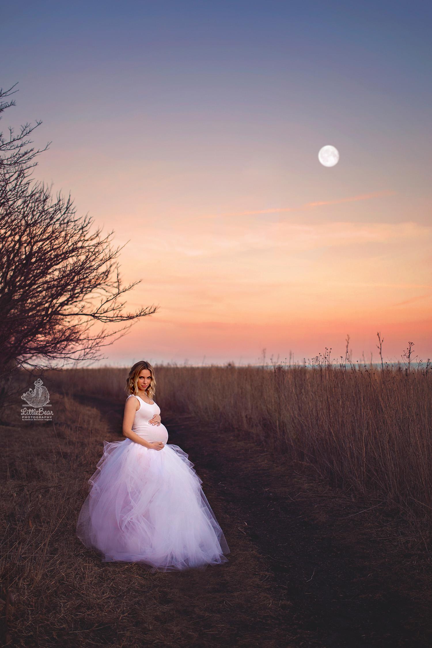 Chicago fine art maternity photography
